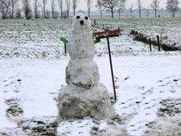 reserve sneeuwring
